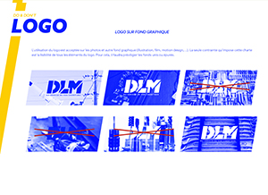 dlm-branding-catalogue-chartegraphique2